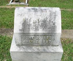 Henry Lowndes Muldrow, Jr