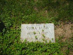 Viola <I>Parker</I> Bush