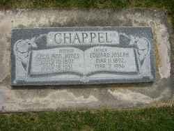 Cecil Ann <I>Jones</I> Chappel