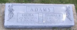 Louisa Jane / Lane <I>Martin</I> Adams