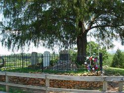Nancy Ward Cemetery