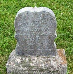 James R Platt