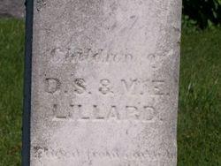 Edwin Y Lillard