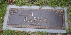 Irving Alexander Baena