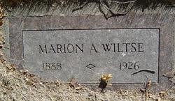 Marion Arthur Wiltse