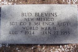 """Hugh """"Bud"""" Blevins"""