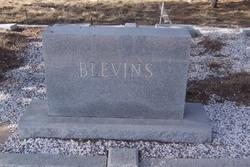 Mattie <I>Adair</I> Blevins