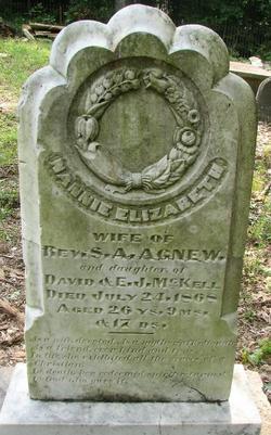 Nannie Elizabeth <I>McKell</I> Agnew