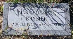 Diane Elizabeth Brymer