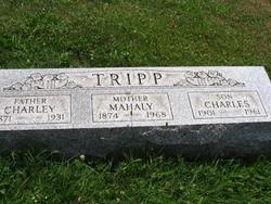 """Mary Mahala """"Haley"""" <I>Wolfe</I> Tripp"""