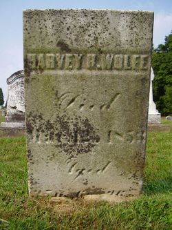 Harvey H Wolfe