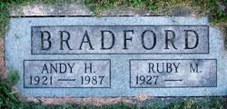 Andy H. Bradford