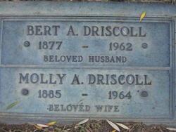 Bert A Driscoll