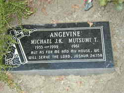 Michael J. K. Angevine