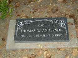 Thomas W Anderson