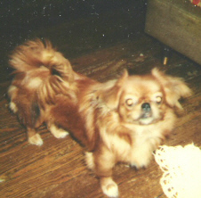Frank & Lillian