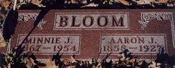 Aaron Jacob Bloom