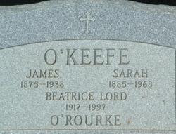 James Joseph O'Keefe