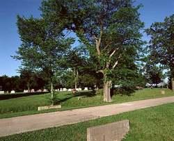 Carlinville City Cemetery