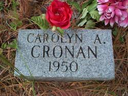 Carolyn Ann Cronan