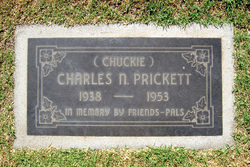 Charles Newth Prickett