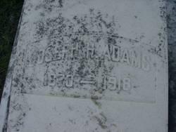 Joseph H. Adams