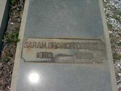 Sarah Elizabeth <I>Branch</I> Carroll