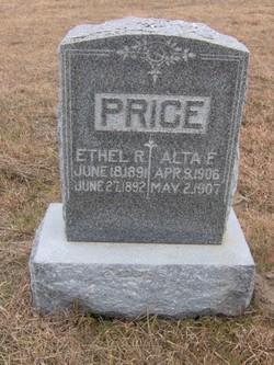 Alta Fern Price