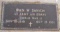 Dan W Savich
