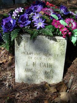 L. N. Cain