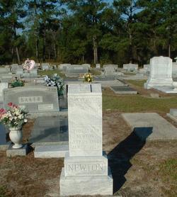 Georgia Ann <I>Tillman</I> Newton