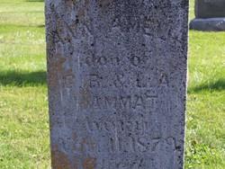 Ann Amelia Hammatt
