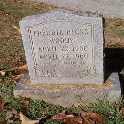 Freddie Hicks Woody