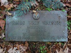 Amos Waif Watson