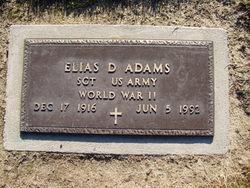 Sgt Elias D Adams