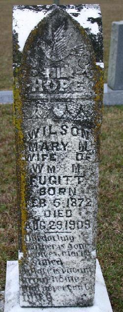 Mary M Wilson <I>Boggs</I> Fugitt