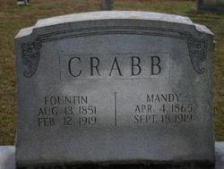 Amanda Eleanor <I>Anderson</I> Crabb