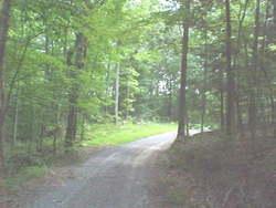 Thurman Cemetery