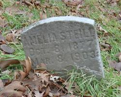 Amelia Steill