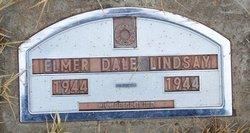 Elmer Dale Lindsay