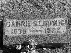 Carrie S. Ludwig