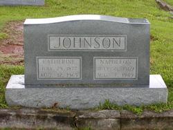 Napoleon Bonepart Johnson