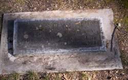 William Guy Stone
