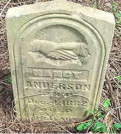 Nancy V. Anderson