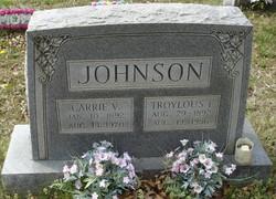 Carrie V. <I>Lee</I> Johnson