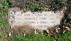 Anthony J Turro