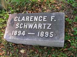 Clarence F Schwartz