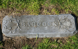 Lester D. Babcock