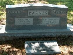 John Wood Barnes