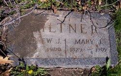 Andrew Jackson Giltner